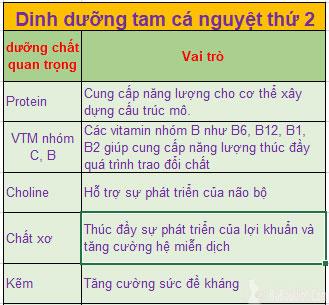 Dinh dưỡng cho tam cá nguyệt thứ 2 (Tháng thứ 4=>6)