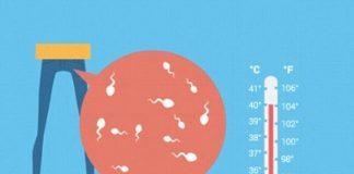 Những nguyên nhân gây giảm tinh trùng ở đàn ông?