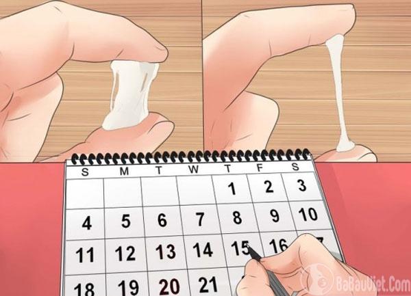 Dấu hiệu rụng trứng: thay đổi chất nhầy ở tử cung