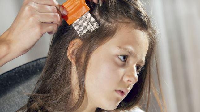 ảnh hưởng với trẻ khi bị chấy