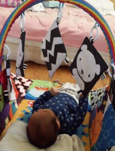 Lá vải có thể treo vào nôi là món đồ chơi cho trẻ.